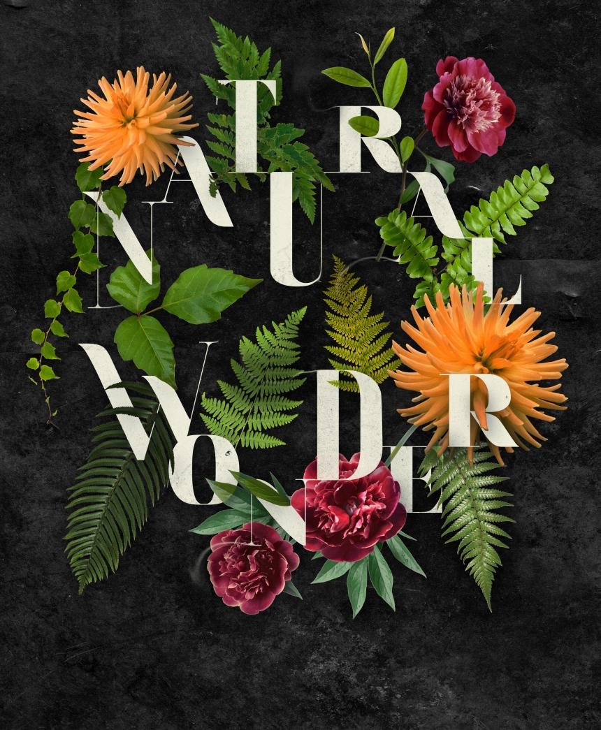 NATURAL-WONDER-v2