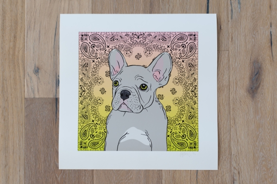 Frenchie-2
